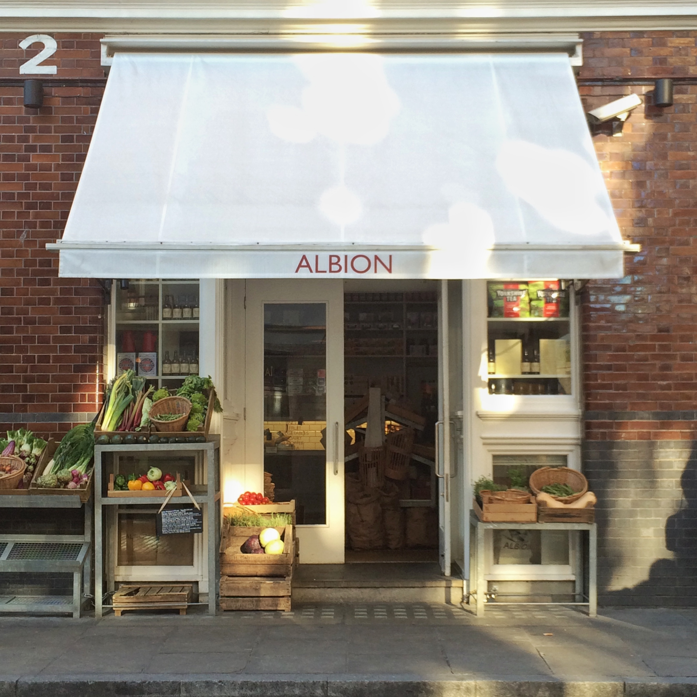 Albion London Nonsolofood
